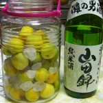 梅仕事1-梅酒と梅ジュース