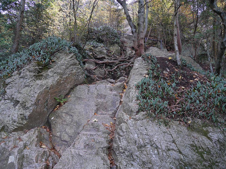岩ばかりの道