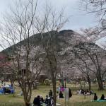 三上山(近江富士)周回ハイキング 4月2日 今日この頃