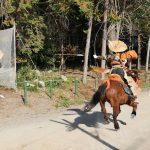 加茂神社の馬上武芸奉納まつり