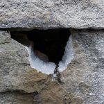 石垣に穴を開ける 11月2日今日この頃