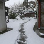 この冬一番の寒波 1月27日今日このごろ
