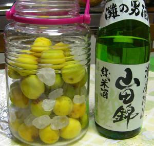 梅酒_純米酒