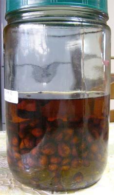 枇杷の種酒