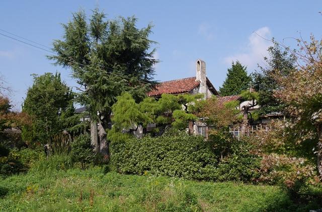 広い庭と邸宅2