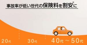 大人の自動車保険