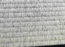 カビが生えた畳ー部分