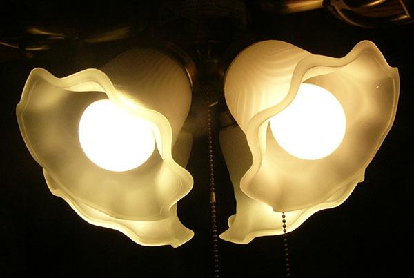 LEDと白熱電球の比較2