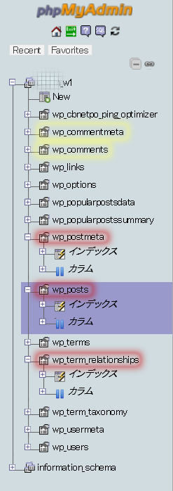 phpMyAdminのパネル3