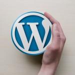記事url変更なしでブログをFC2からWordPressへ移行~(3)テーマのインストール以降