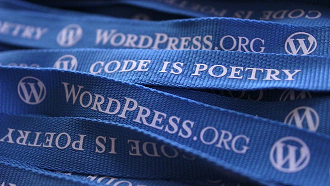 wordpress-552922_660